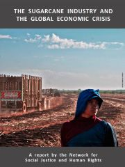 THE SUGARCANE INDUSTRY AND THE GLOBAL ECONOMIC CRISIS